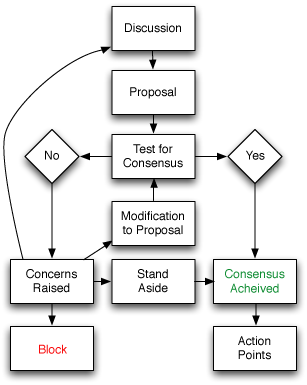 Consensus process flow chart